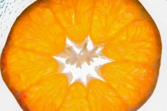 Fruit Lightning-4